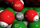 "An image of a grey sphere labeled as ""Na+"" with a red sphere on top labeled as ""H20"" and a green sphere labeled as ""Cl-."" And on the left and right side there is a larger red sphere with a ""-"" and a connecting white sphere labeled with a ""+."" And in the background there are a lot of green spheres."