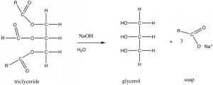 "An image of three Lewis structures. The first structure is starts of with three letter C lined up vertically that are connected to each other. Each letter C has a letter H connected to the right and a letter O connected to the left. And then one H on the top and bottom. Each letter O is connected to a letter C and a letter R by a single line. Then each of the letter C's are connected by a double line to the letter O. This structure is labeled as ""triclyoeride."" Next to the structure is an arrow. The top of the arrow has a label ""NaOH,"" and the bottom is labeled as ""H20."" The second structure is labeled as ""glycerol."" There are three letter C's vertically lines each connected to each other by a line. On the left side of each letter there is an HO connected and to the right, top, and bottom there is a letter H connected to the letter C's. The last structure is labeled as ""Soap"" and has a letter C in the middle that is connected to the letter R by a line on the left side. To the right of the letter C there is a double line connected to the letter O. And lastly to the bottom of the letter C there is a single line connected to the letter O that is labeled as ""Na+."""