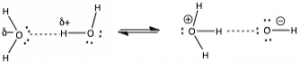 "An image of two structures. The first structure is the letter O with two dots on the top right and bottom right side with a label of ""sigma -."" And is connected to two letters H's to the top and bottom left side. The letter O is also connected to the letter H to the right side by a dotted line. That letter H has a label of ""sigma +"" and is connected to a letter O that has two dots on the bottom and right side. Then to the right of the structure there is an arrow pointing left and right. Then to the right, structure two starts off with the letter O that has two dots to the left side and a label of ""+."" And is connected to three letter H's to the top, right, and bottom side. The right H is connected to the letter O by a dotted line. Then the letter O had two dots on the top, left, and bottom side, and has label of ""-."" And is connected to the letter H to the right side."