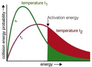 "An image of a graph with an x-axis labeled as ""energy"" and the y-axis labeled as ""collision energy probability."" In the graph there are two lines one green and one red, both are curves. The green curve has a higher peak and has a label of ""T1"" and ""temperature at t1."" The red curve has a label of ""T2"" and has a lower peak. In the middle of the x-axis a line cuts through both the the graphs labeled as ""Activation energy"" and to the right of the line the curved lines both are filled in."