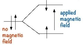 """An image of a line that branches out to two parts and into two straight lines. The first single line has two arrows pointing up and down labeled as """"no magnetic field."""" And the two straight lines have arrows pointing towards the middle. And in the middle there is another arrow to the right pointing up labeled as """"applied magnetic field."""""""