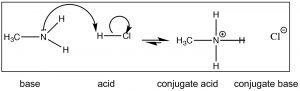 Lewis structures of generic amino acid, adenine, morphine, and cocaine.