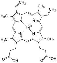 An iron-porphyrin complex.