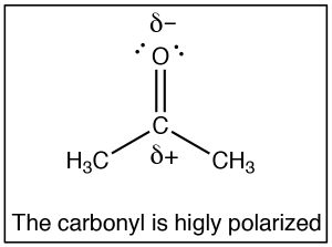 Lewis structure of carbonyl that is highly polarized.