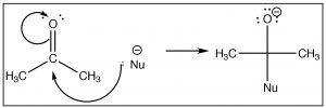 Nucleophile drawn as a Lewis structure.