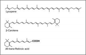 Images of Lycopene, B-Carotene, and All-trans-Retinoic acid.