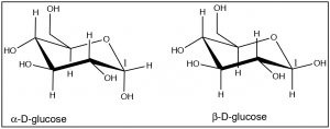 An image of C-1 in alpha-D-glucose and beta-D-glucose.