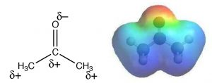 An image of two representations of acetone showing the distribution of charge.