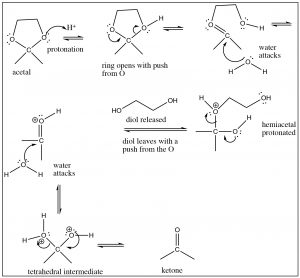 An image of the mechanism of hydrolysis.