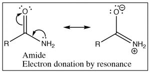 An image of a reaction of amide electron donation.