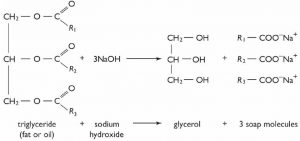 An image of a long chained fatty acids esters of glycerol.