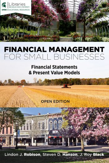 Cover image for Financial Management for Small Businesses: Financial Statements & Present Value Models